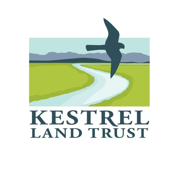 kestrel-logo-landscape-color HI
