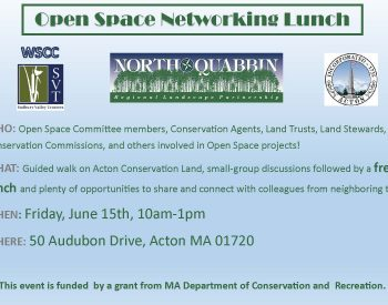 Open Space Networking Lunch Flyer Invitation PDF